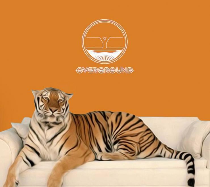 Overground: Adana Twins (Extended Set), Phil Dark